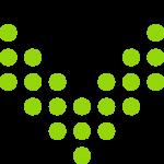 caragon flex
